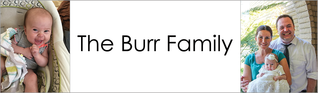 The Burr Family