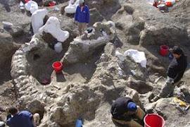 """Descubren en Santa Cruz los huesos de un dinosaurio """"colosal"""""""