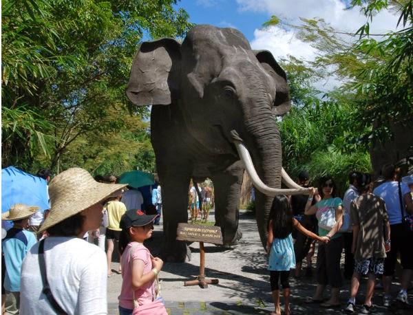 liburan keluarga di Bali Safari