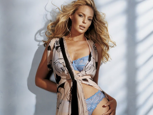 Katherine Heigl Sexy in Lingerie