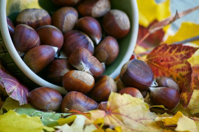 ... Walk on Gellatly Nut Farm and Chestnut Risotto with Butternut Squash