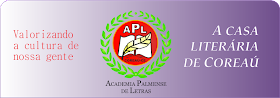 APL - ACADÊMIA PALMENSE DE LETRAS