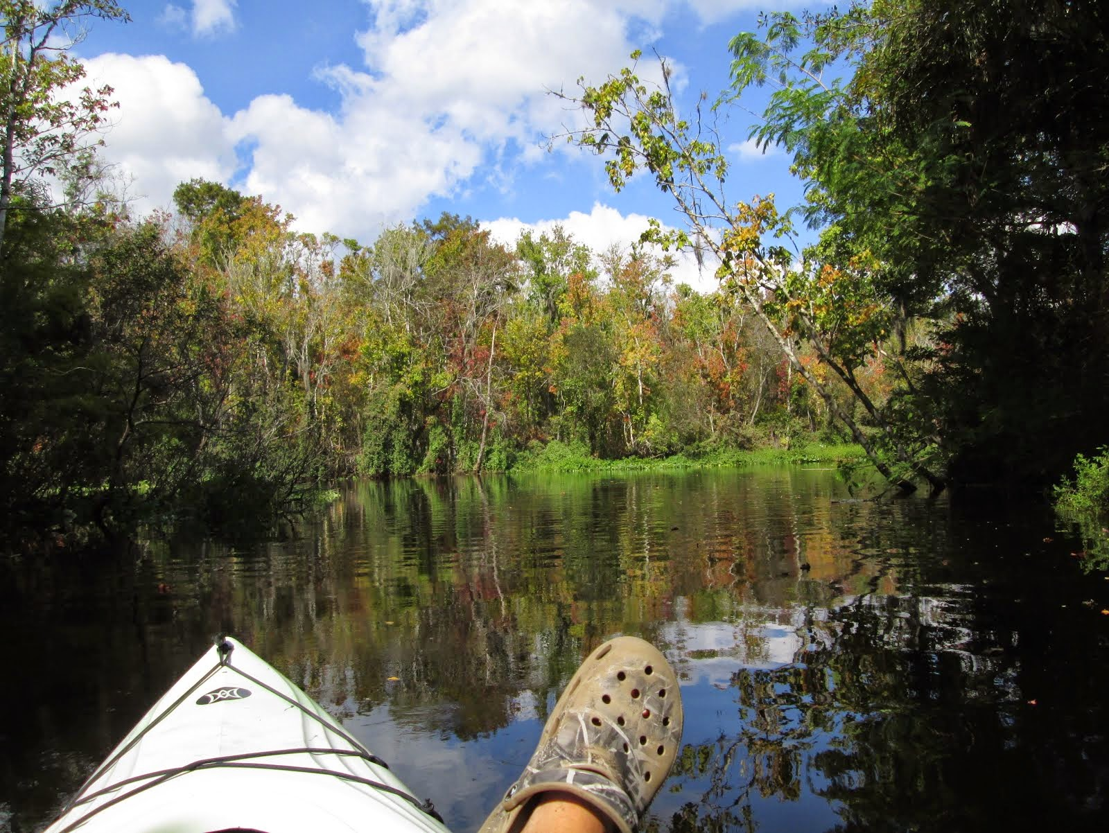 If this is Your Orlando Kayak Tour...