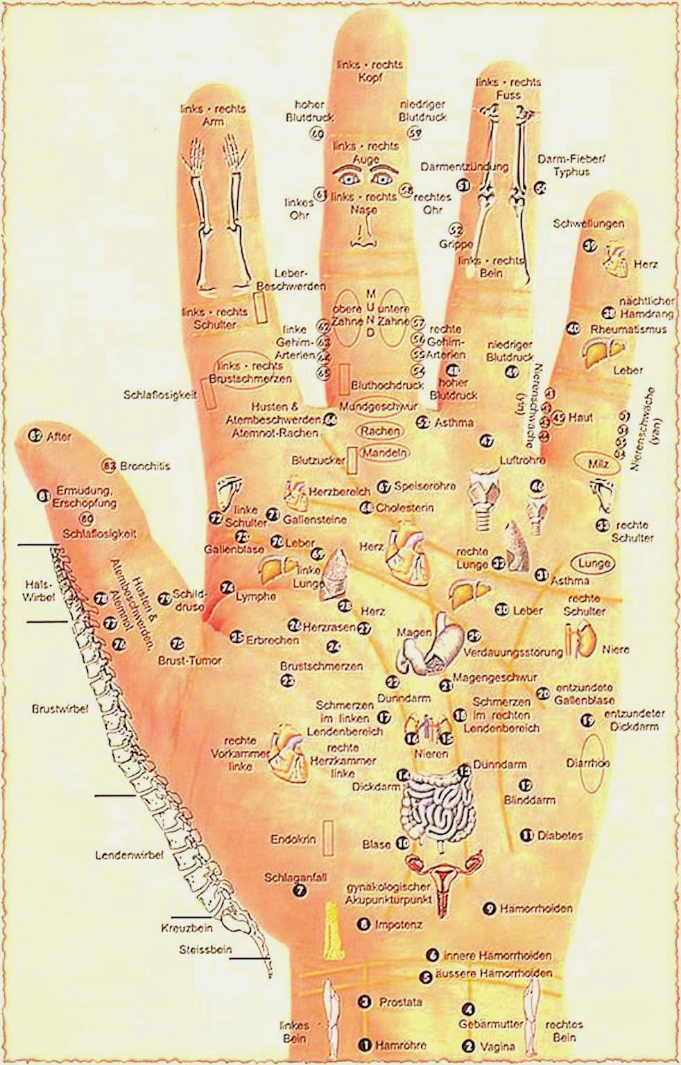 Magnetfelder Akupunktur Innenhand