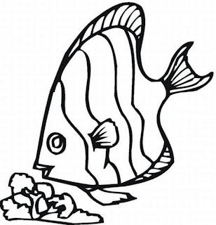 Desenhos Para Pintar Peixe Fino