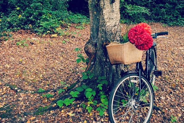 Vintage town bike