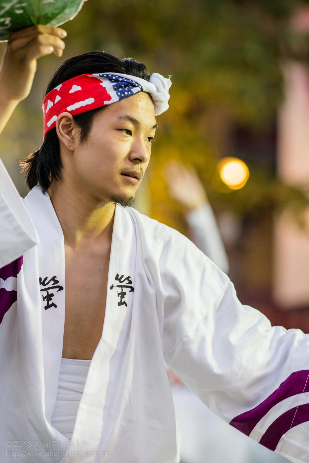 三鷹阿波踊り、江戸の阿波 螢の男踊り うちわ