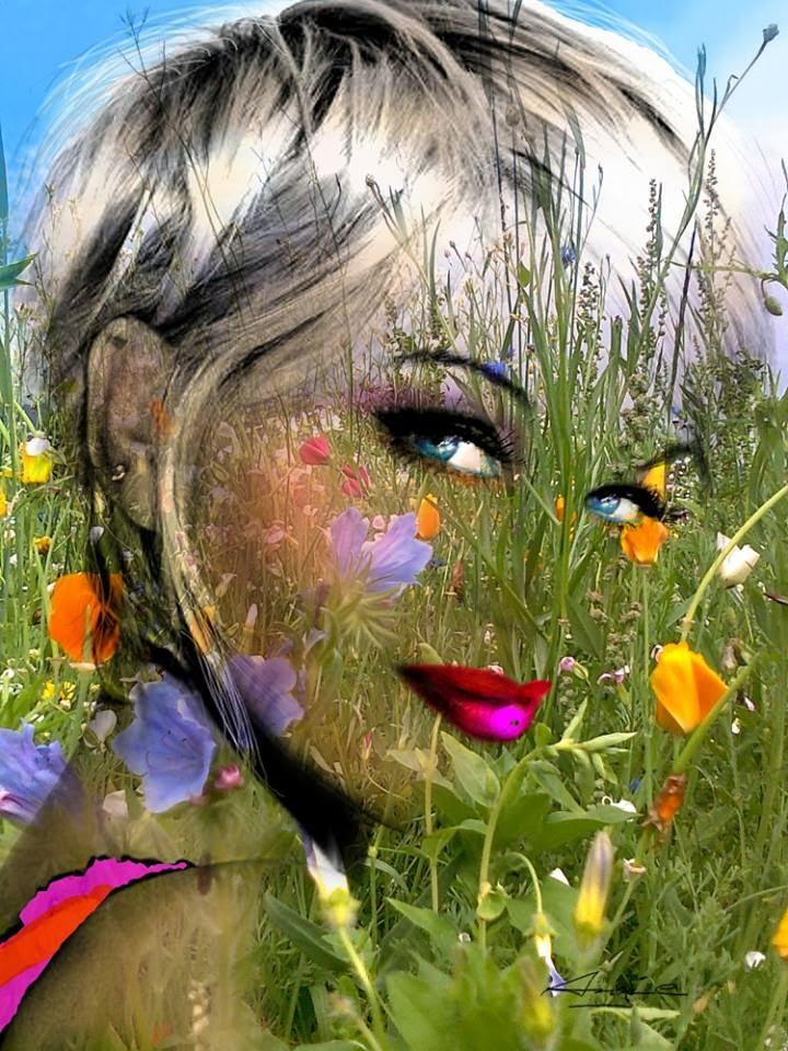 Angie Braun   Tutt Art@ ()