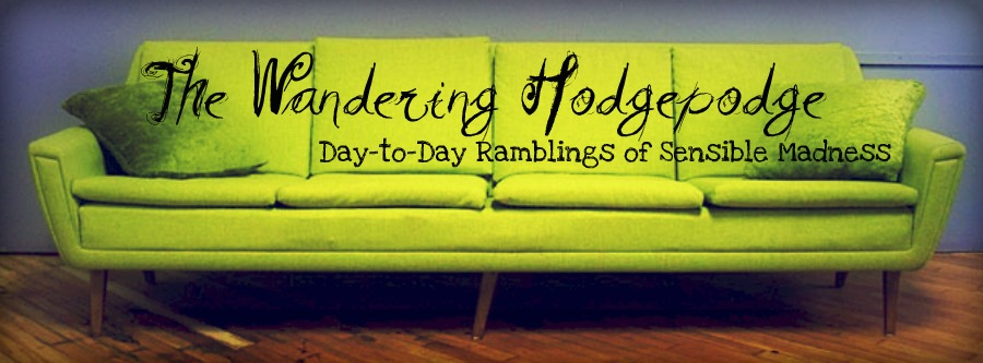The Wandering Hodgepodge