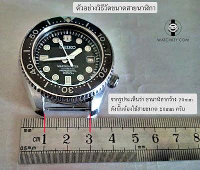 วิธีการวัดขนาด Lug Width หรือความกว้างของขานาฬิกา เพื่อเลือกขนาดสาย