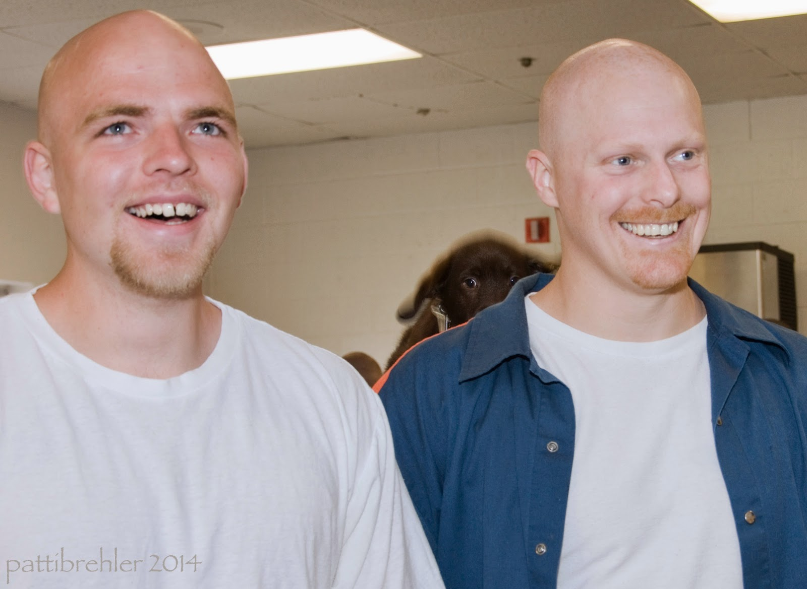 Two smiling bald men face the camera, each are wearing a white t-shirt, but the man on the right has an open blue shirt over the t-shirt. Just over the right shoulder of the man on the right is the small brown head of a chocolate lab puppy.