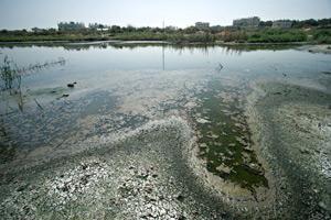 Gaza sewage lake