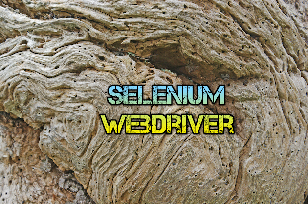 Selenium Web driver Code Snippets For Web App Testing Automation