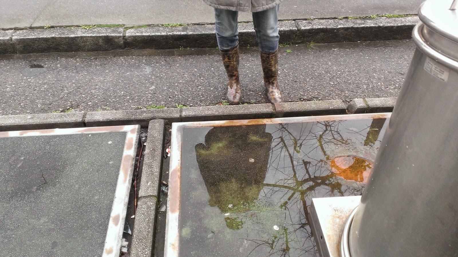 mi reflejo en el agua