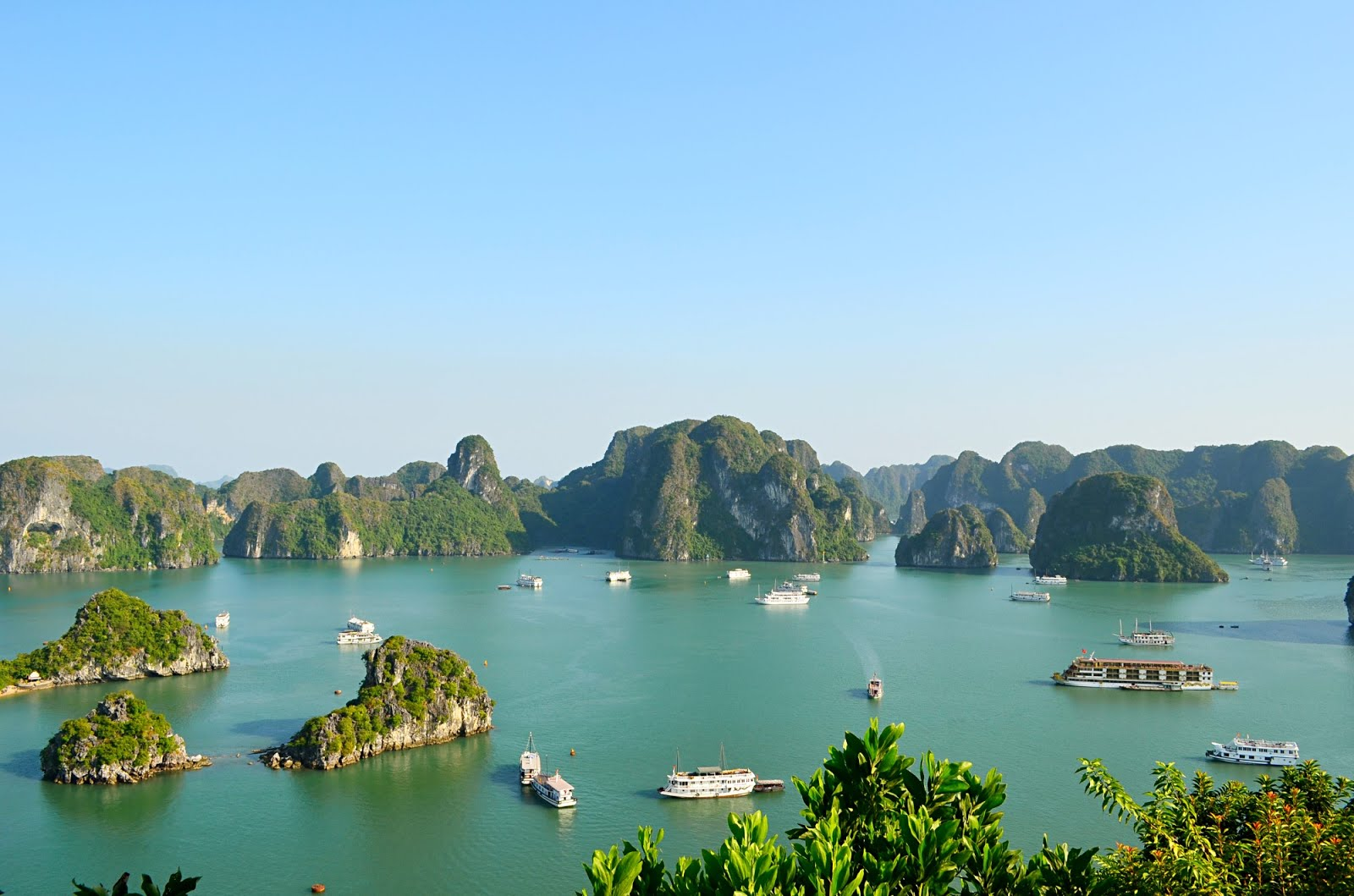 ha long bay essay Visiting halong bay, you will not only have the chance to watch the beautiful and epic scenes, but also experience the interesting things especially, visitors will be impressed with the night squid fishing in halong bay – an attractive activity bringing many exciting experiences.
