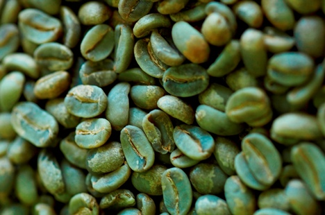 Green coffee bean and headaches picture 10