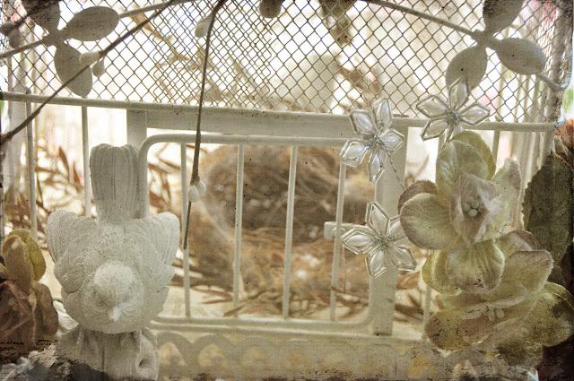 bird nest cage