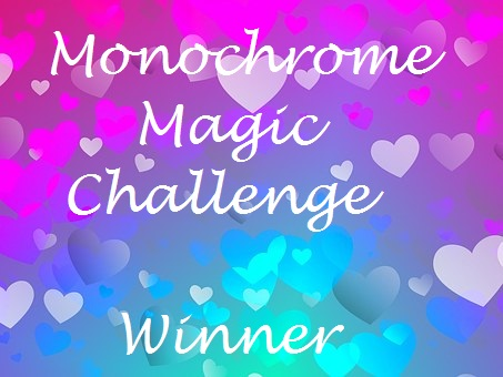 Winner at Monochrome Magic Challenge Blog