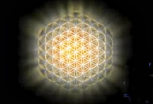 ✡The Flower of LIFE ✡