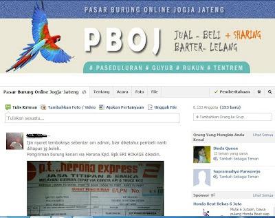 PBOJ (Pasar Burung Online Jogja Jateng)
