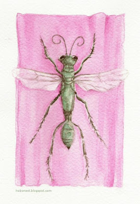 watercolor_drawing_green_bug_wings_pink_cellophane