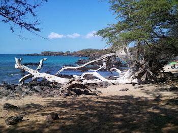 Beach 69 - Big Island 2012