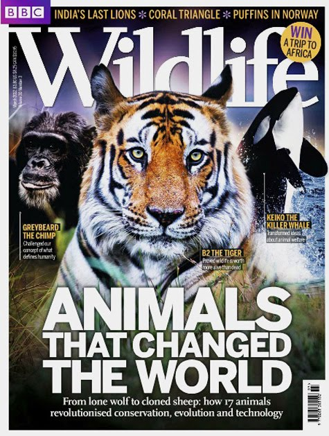 BBC Wildlife Endangered Species Cover