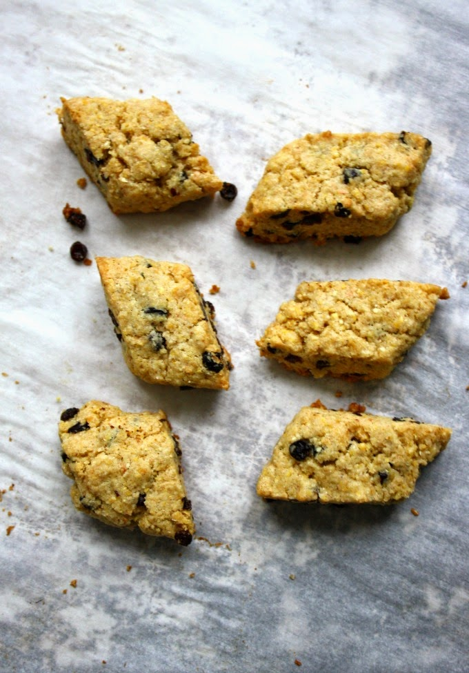 Stop to Savour Italian Currant Cornmeal Cookies Called Zaleti