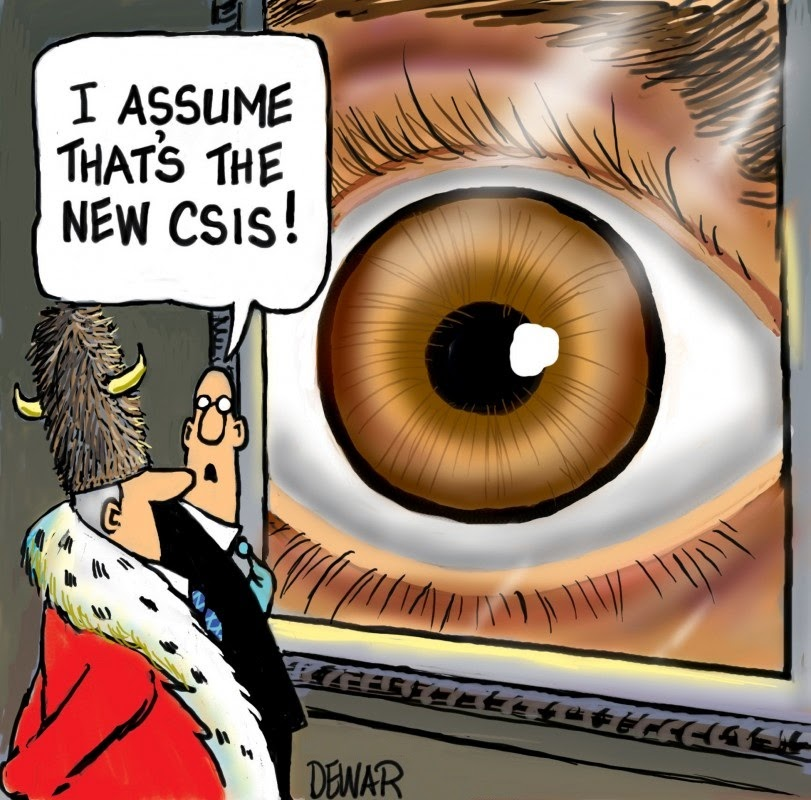 Sue Dewar: CSIS Eye that looks like an asshole or a donut.