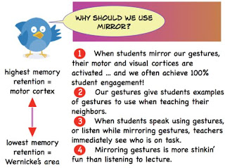 WBT, whole brain teaching strategy of mirror, using wbt mirror to learn