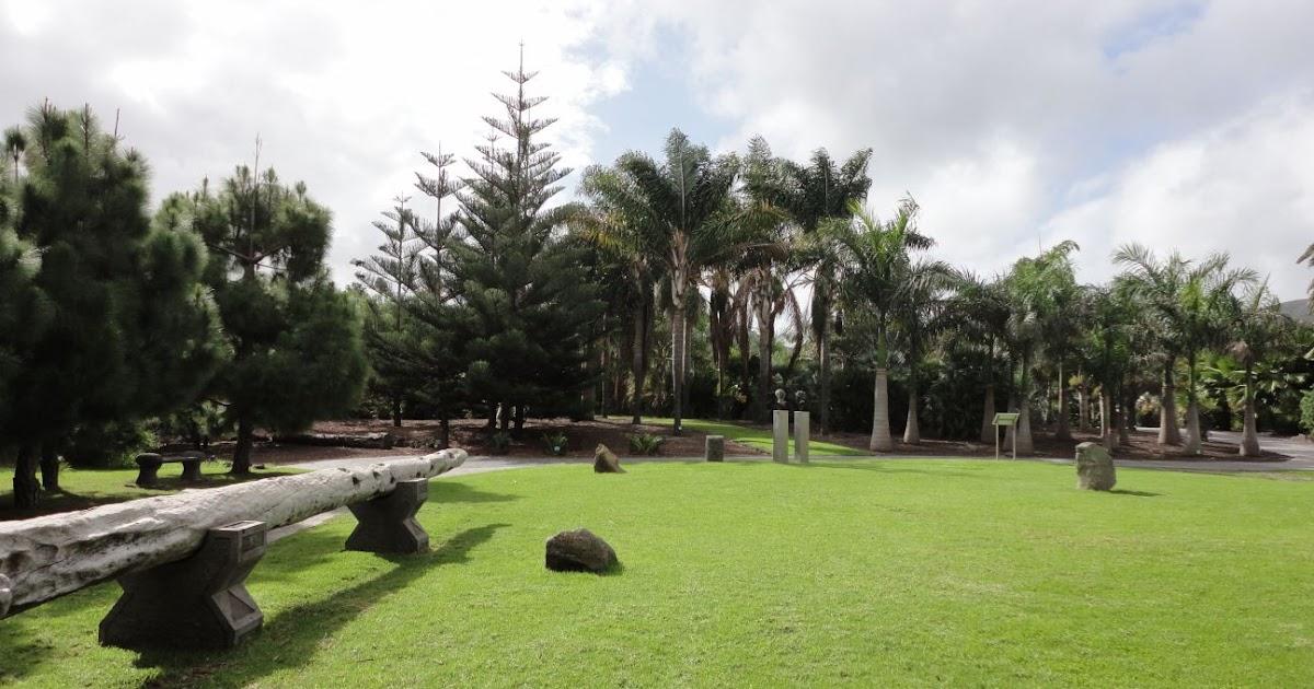 Vivere in camper i paradisi verdi di las palmas de gran for Jardin canario
