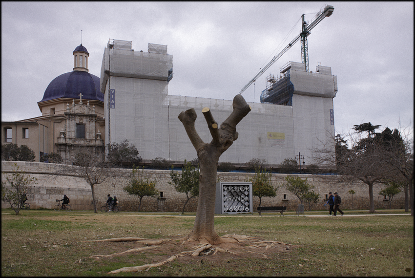 fotografia,valencia,arriba_extraña,naturaleza,museo_bellas_artes,jardin_turia