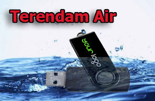 flash disk terendam air