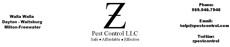 Ants, Spiders, Mice, Weeds - Z Pest Control LLC, Walla Walla, Washington