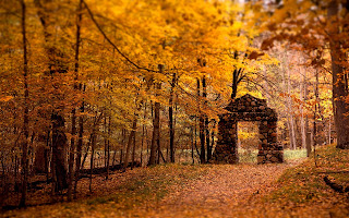 Stone Gate Red Forest Autumn Fall Trees Yellow Leafs HD Wallpaper