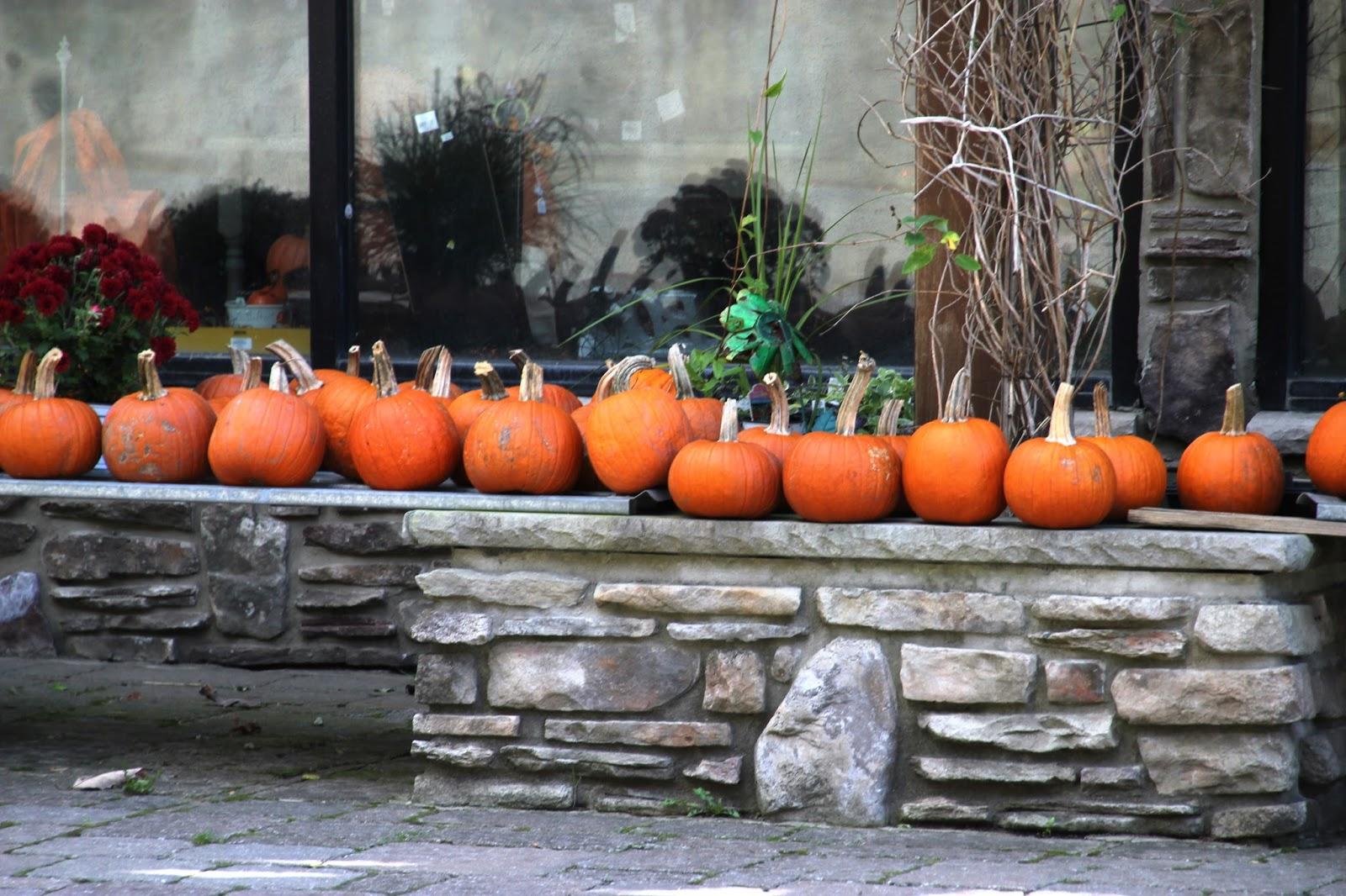 thanksgiving offizieller feiertag usa
