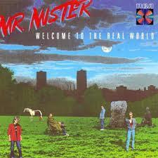 Mr. Mister