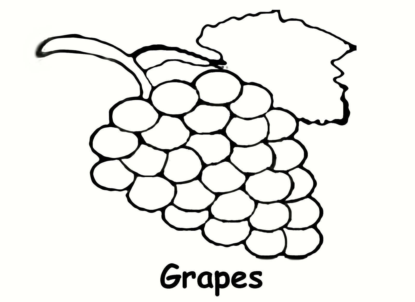 grape coloring pages - photo#9