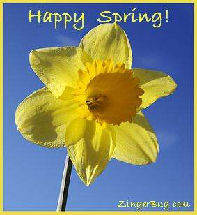 happy spring 