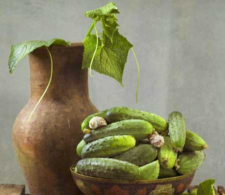 Рецепт приготовления малосольных огурцов с кабачками