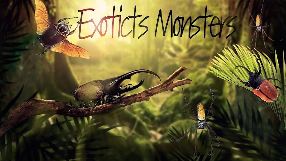 venta de dynastes hercules venta de megasoma elephas ExoticsMonsters larva sale
