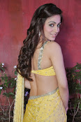Aksha pardasany latest hot pics-thumbnail-10