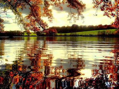 el agua en calma del otoño Fotografias de otoño