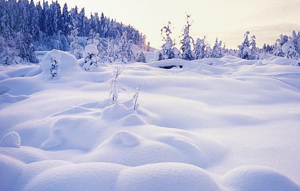 Lapland Best Christmas Spot Of Finland Travel And Tourism