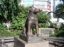 Patung hachiko di depan stasiun Shibuya