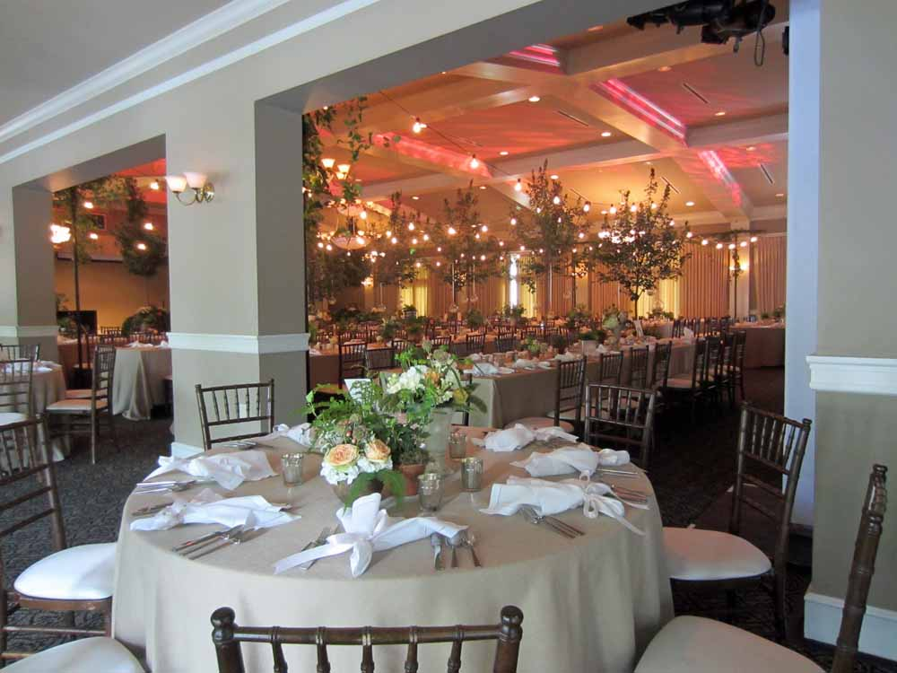 Real Wedding Park Like Wedding Reception Elite Events Rental