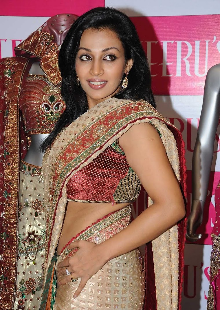 Asha Saini Sexy Stills in Saree