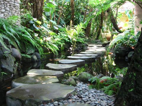 Bali jungle garden jungle style bali garden design for Balinese garden design