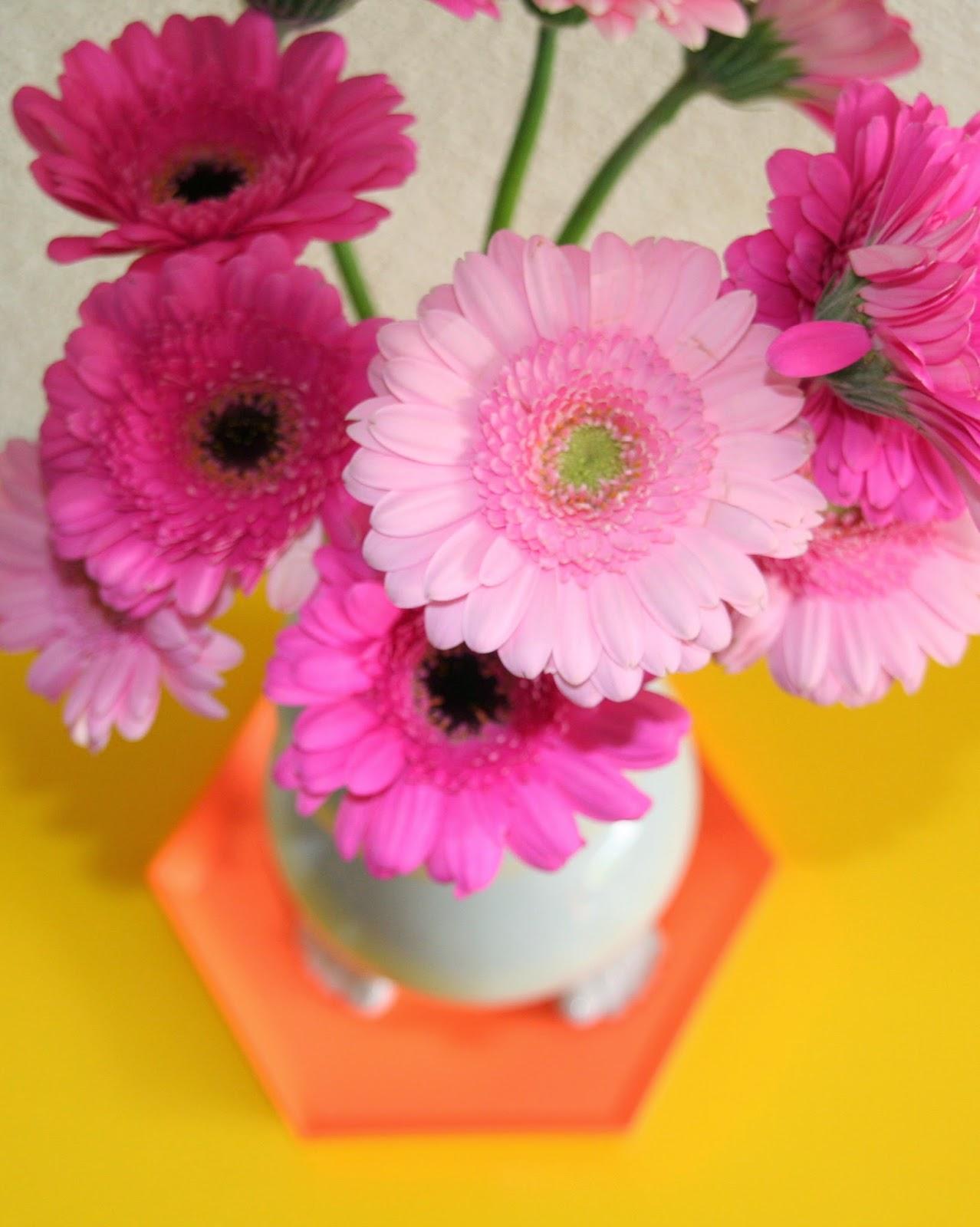 Annabel Helena Blog - flowers hay kaleido