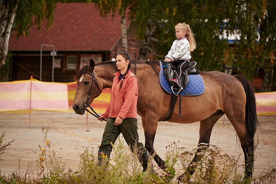 И снова цирк с конями